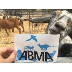 ABMA Decal