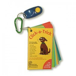 Click-A-Trick Cards