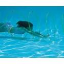 Swim through Slalom Hoops (Set of 4)